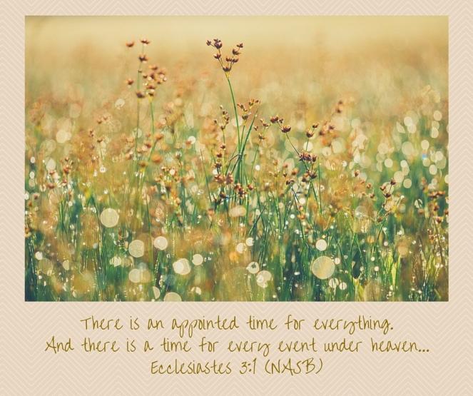 Ecclesiastes 3-1 (NASB)